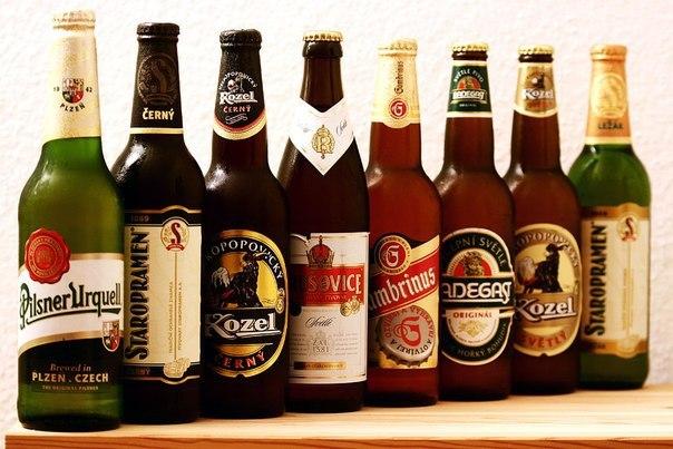 7 фактов о вреде пива